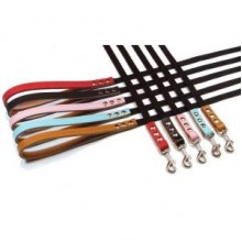 Buddy Belts Accent Leather & Nylon Leather Leash